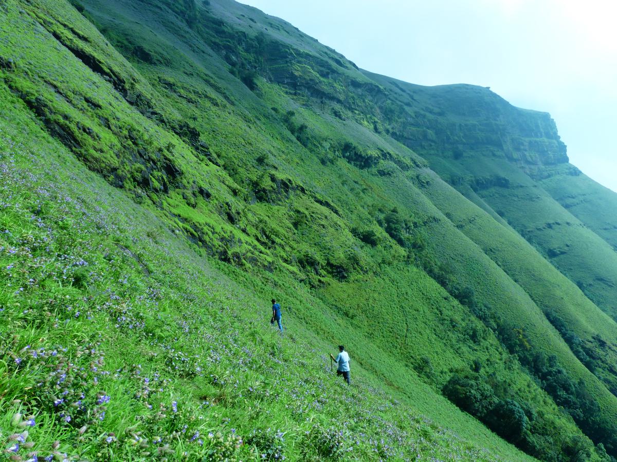 Meghalaya diaries